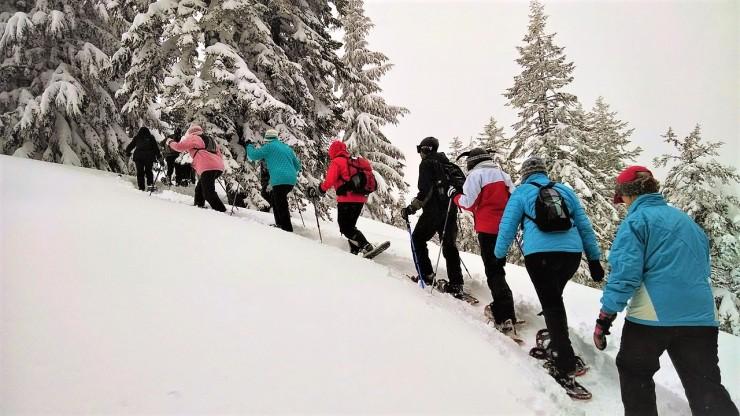 hiking-378614_1280