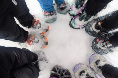 Circling the snowshoes