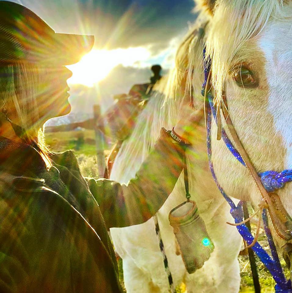 Nikki horse
